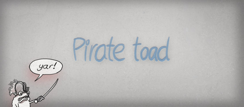 Pirate toad