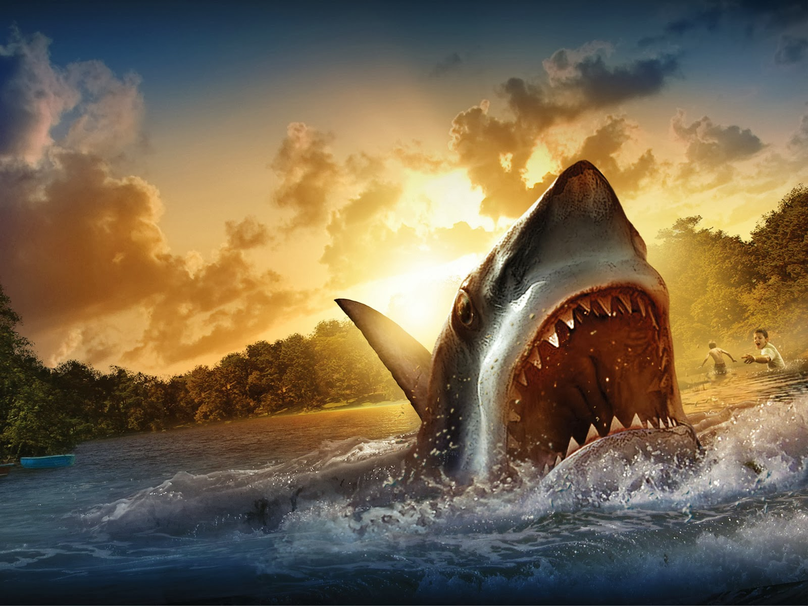 download wallpaper shark 1600 - photo #9