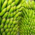 Бананите заплашени от изчезване заради гъбично заболяване