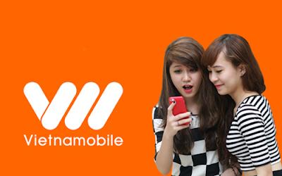 Đăng ký gói cước 3G N10 Vietnamobile không giới hạn