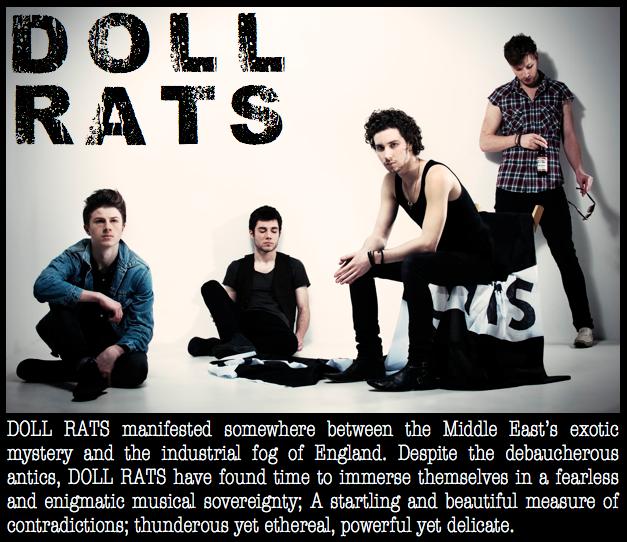Doll Rats