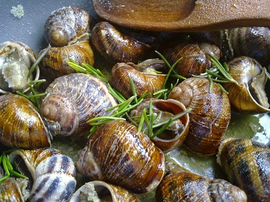Snails with Rosemary and Wine, Mediterranean Diet, The Cretan Diet,