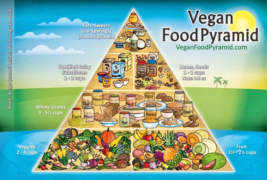 Lovely vegan ladies raising a vegan child topic 2 supplementing
