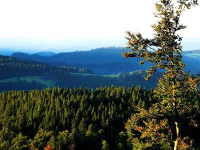 a Floresta Negra, na Alemanha. Foto de Rainer Sturm