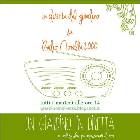 in diretta dal giardino su Radio Novella 2000