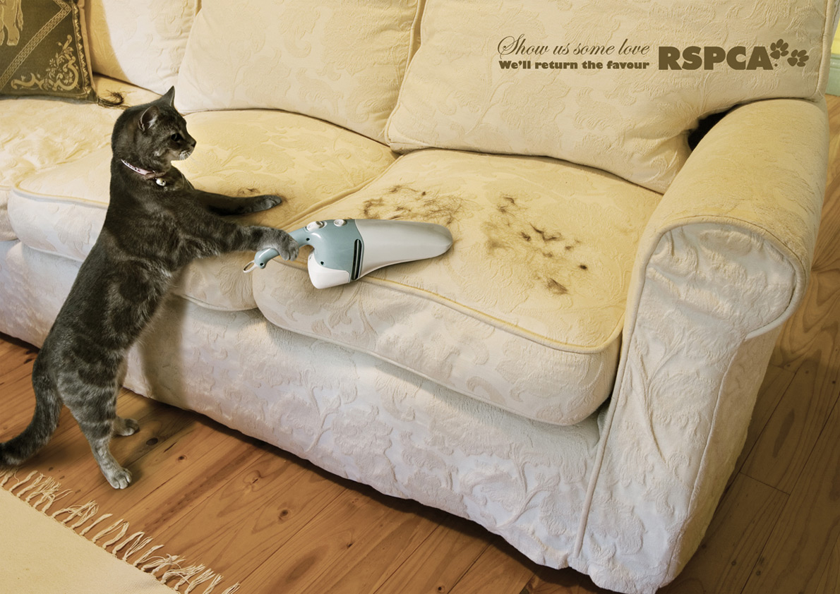 Best Vacuum For Pet Hair Uk >> Silent Cities: Research Into Charities & Organisations