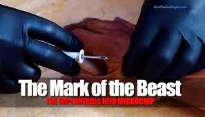 Mark RFID Chip 666