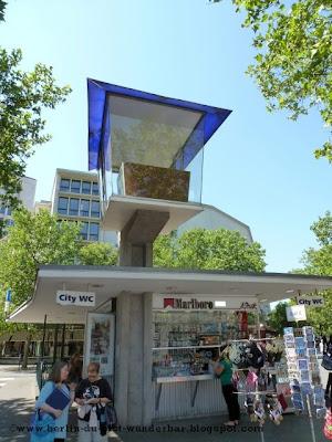 Zoo Bar Cafe Menu