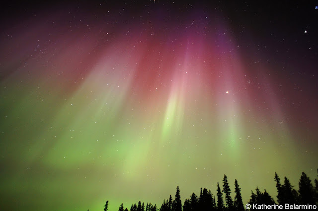 Photographing Pink and Green Northern Lights