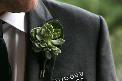 Modern Succulent boutonniere