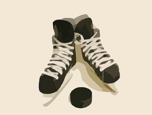 Słówko na niedzielę: hockey sur glace cz. 2