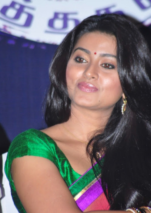 sneha spicy saree inages_unseen photo gallery
