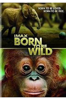 Watch Born to Be Wild Movie Online Free 2011