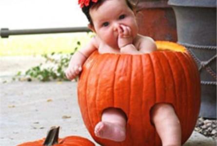 Pumpkin Baby Sitter