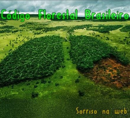 código florestal brasileiro - sorriso na web