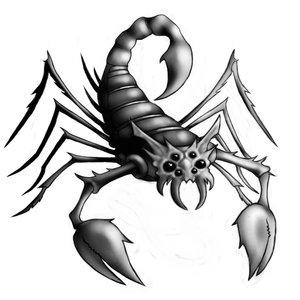 Sifat Dan Karakter Cewek Zodiak Scorpio