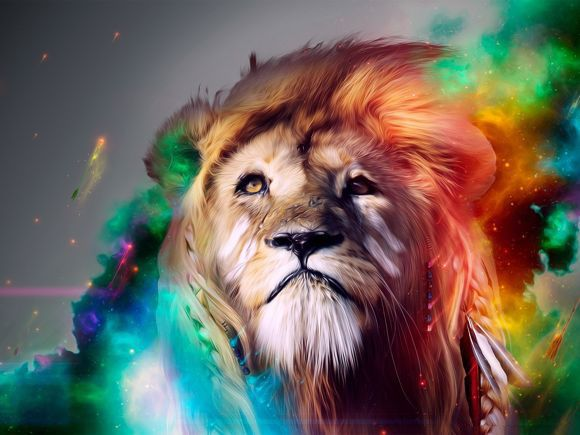 Amazing Lion Wallpapers