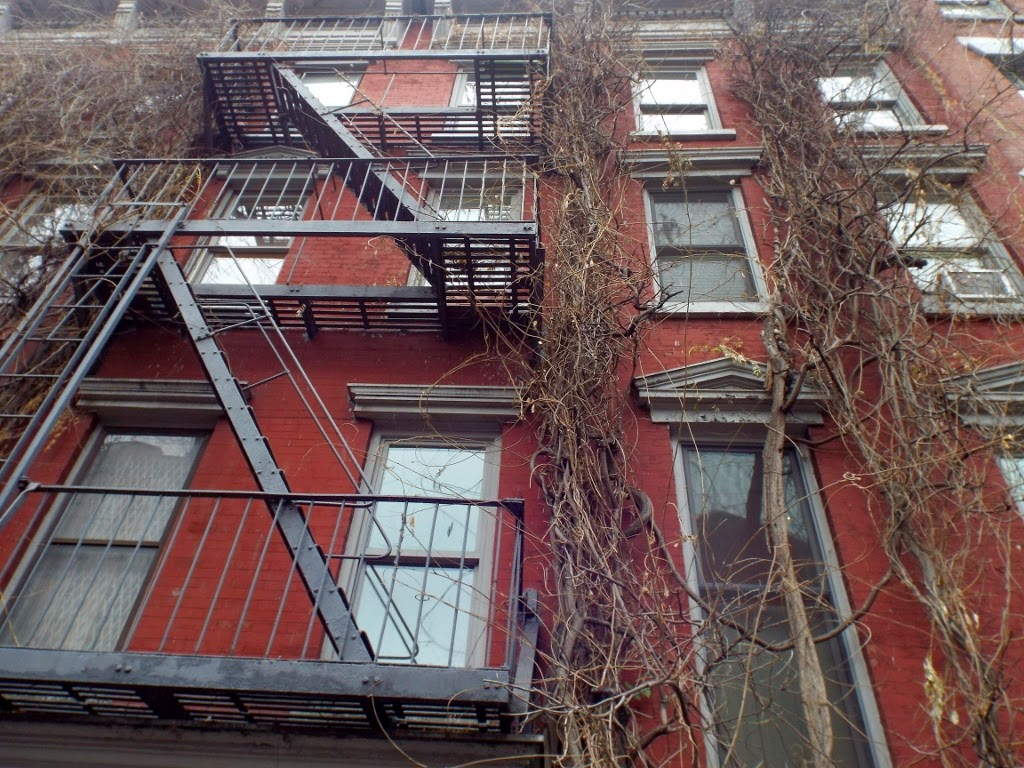 fire escapes and vines on a building in Greenwich Village, New York - photo by Katie @ Second-Hand Hedgehog travel blog