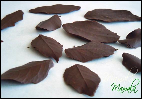 Mar a decoraciones con chocolate las hojas - Decoracion con chocolate ...