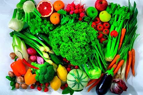 invierno-verduras-alimentacion