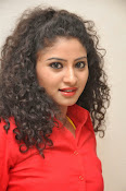 Vishnu Priya glam pics-thumbnail-6