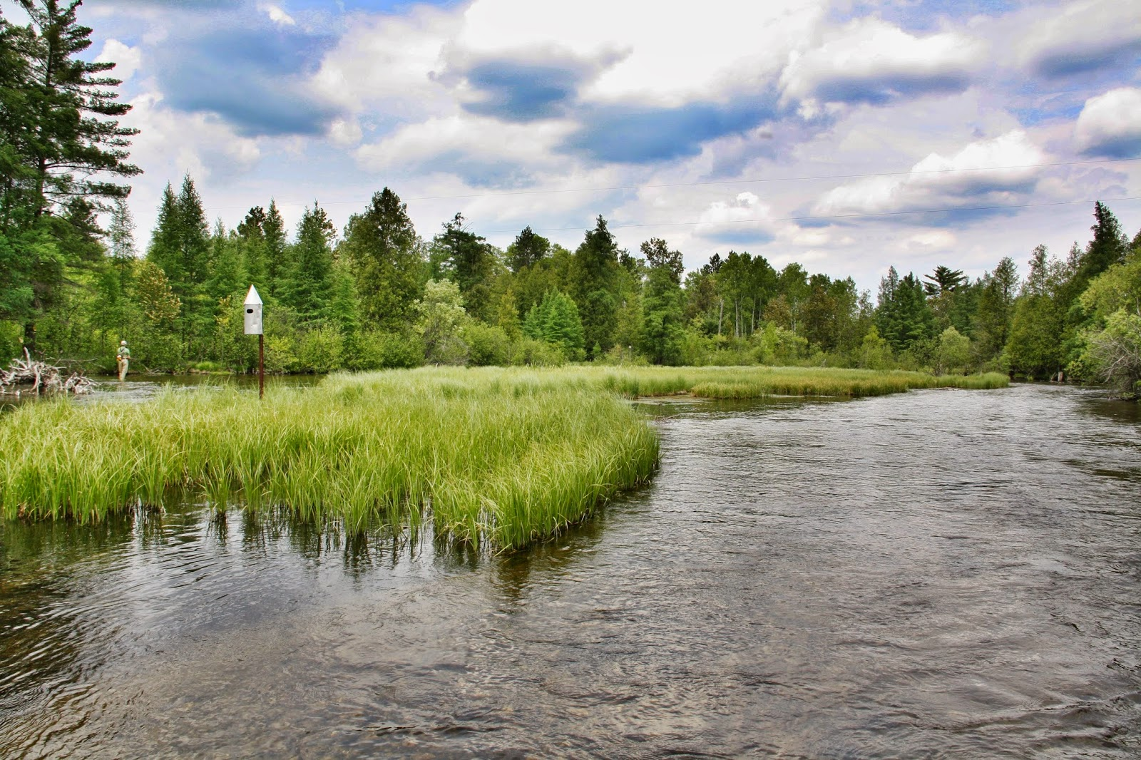 Au Sable River Realty