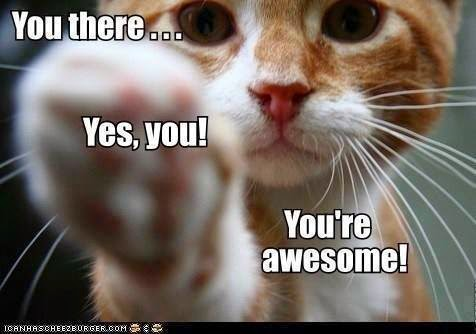 you there! yes you! you're awesome!