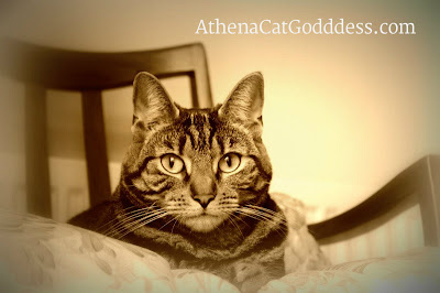 Athena in Sepia