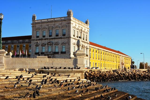 Praça do Comércio, Lisbon seagull