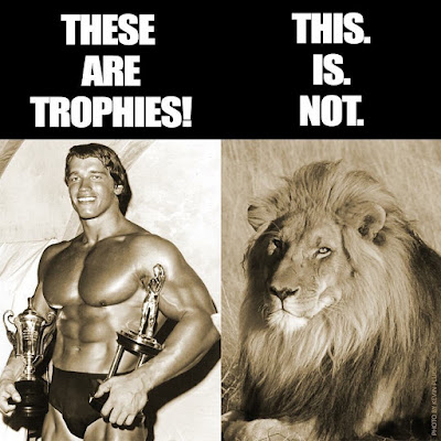 Arnold Schwarzenegger en Instagram
