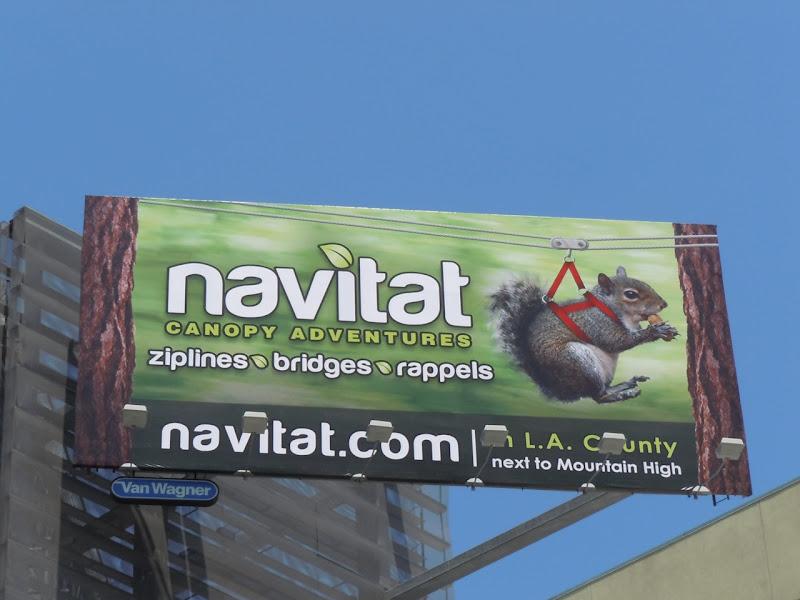 Navitat Squirrel billboard