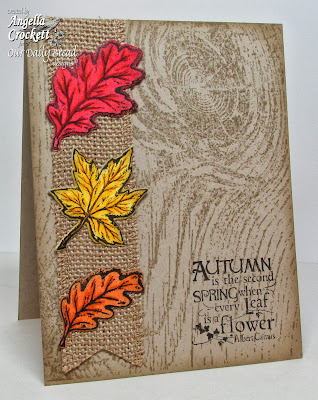 "ODBD ""Autumn Blessings"", ""Fall Leaves and Acorn"" Die Set, ""Wood Background"", Card Designer Angie Crockett"