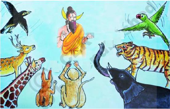 Peace and Harmony (www.naabadi.net)