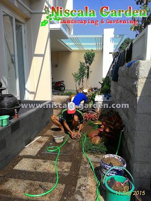 jasa pembuatan taman di wilayah surabaya barat, Benowo, Wiyung, Citra Land, Graha Family, Pakuwon, Pondok Indah, Pratama, Royal Resident, Wisata Bukit Mas, The Prambanan Resident, Forist Resident dan Sekitarnya.