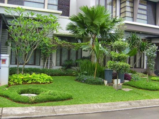 Tukang taman minimalis | jasa penanaman rumput dan pembuatan taman | supplier tanaman hias dan rumput taman