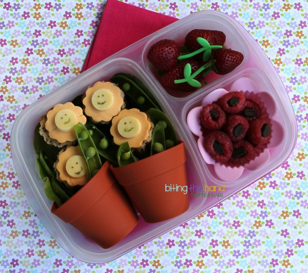 Kindergarten - Child's Garden Bento Lunch