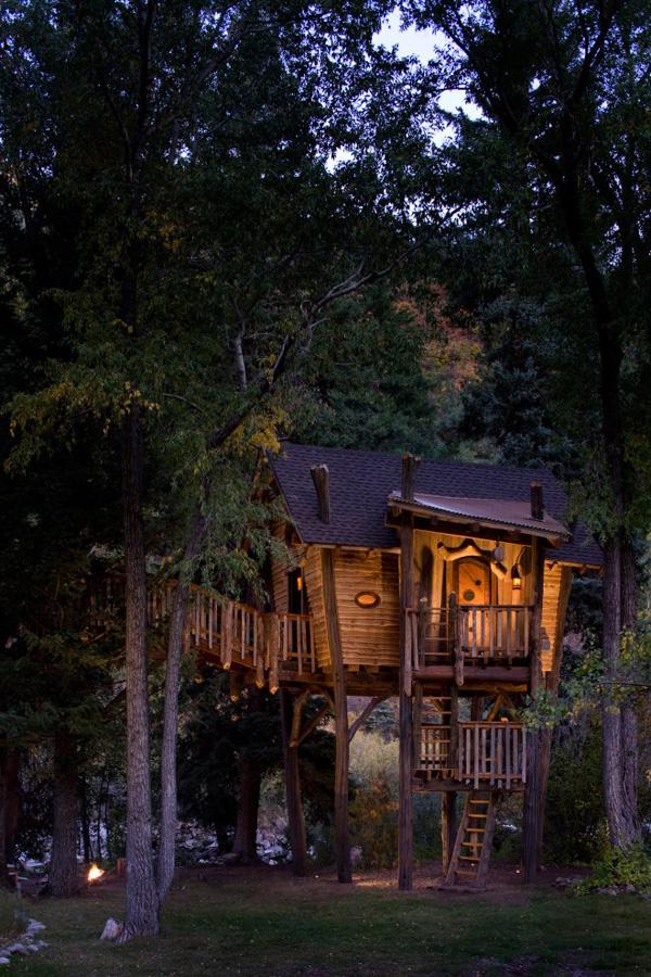 vista de la casa sobre el arbol de noche