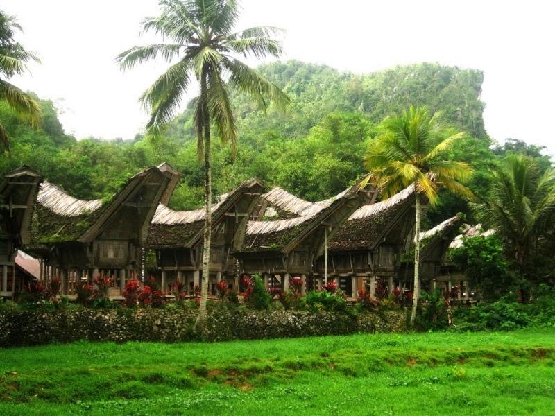 บ้านแบบท็องโกนัน ที่เมืองทานา ตอราจา เกาะสุลาเวสี อินโดนีเซีย