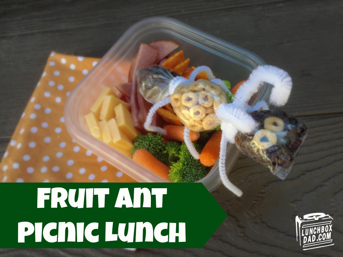 Fruit Ant Picnic Kids Lunch #bento #spons
