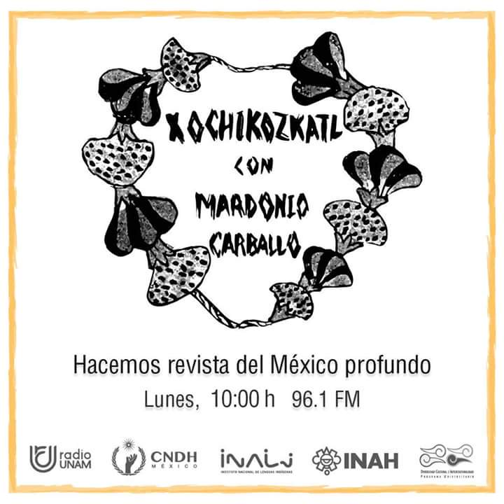 Escucha la cápsula del PUIC en Xochikozcatl