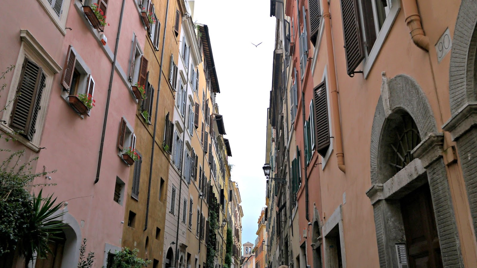 Colourful old street in Rome Italy