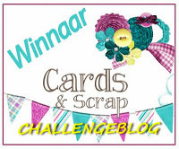 top 3 Cards en Scrap Challengeblog
