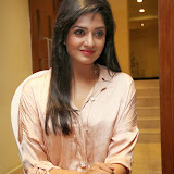 Vimala Raman Latest Photos in Jeans at Trendz Life Style Expo 2014 Inauguration 0024
