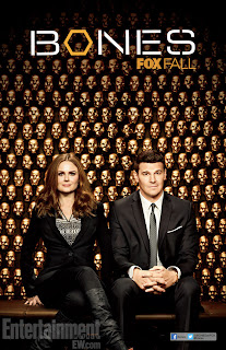Download - Bones S09E02 - HDTV