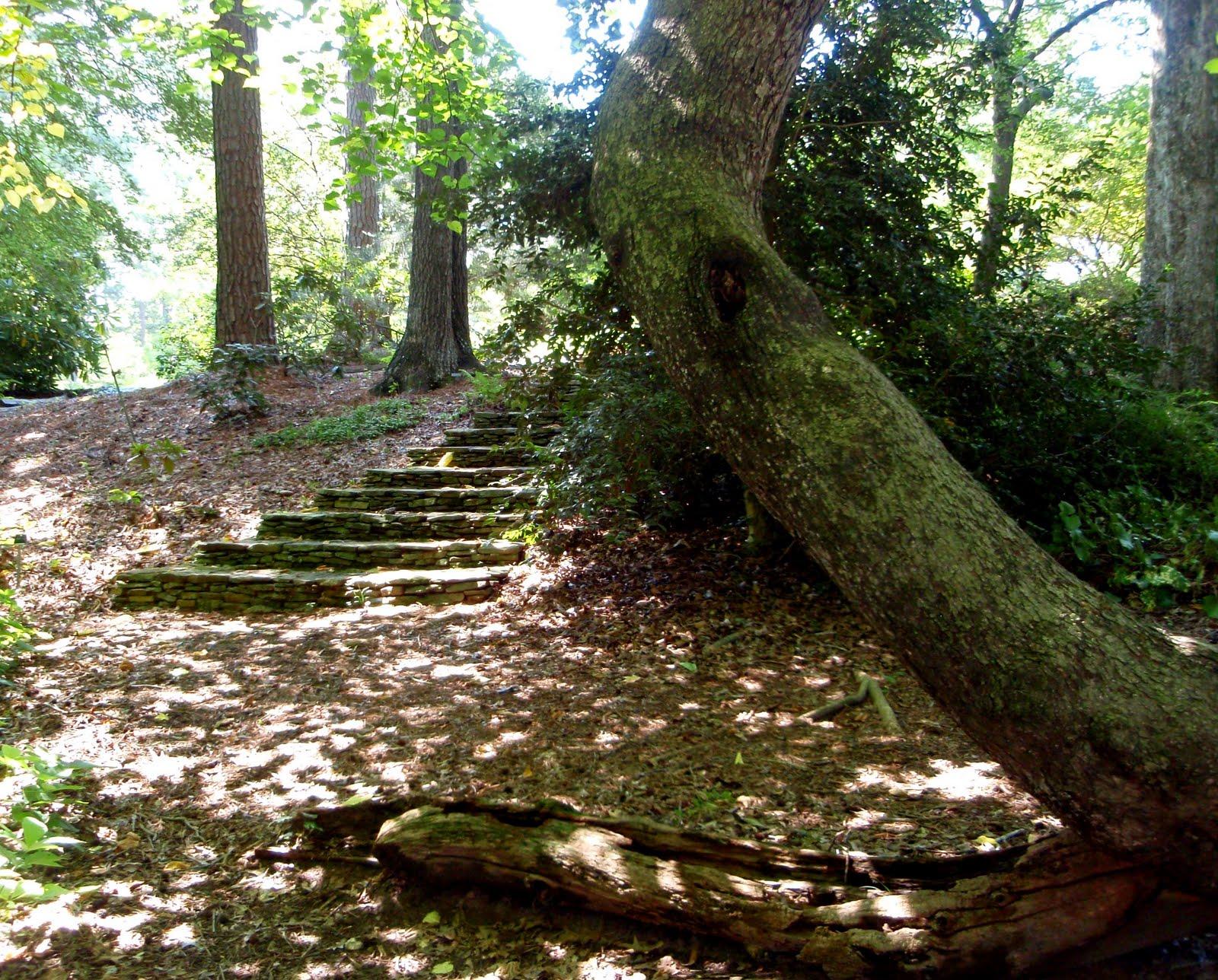 Recollections of a Vagabonde: A Secret Garden in Cobb County ...