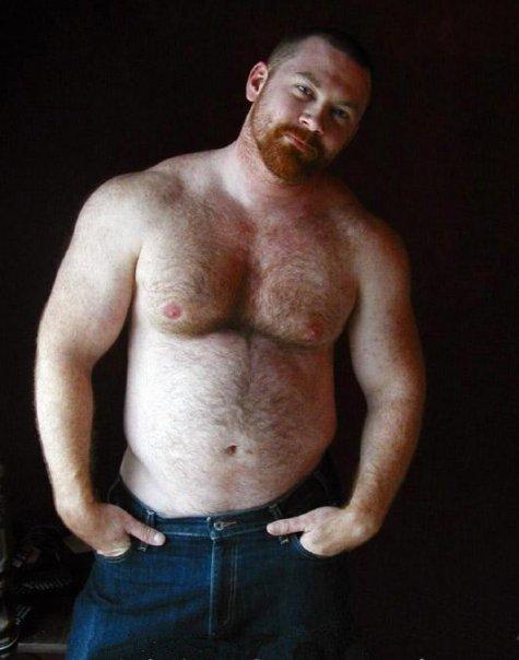 gloria oso gay