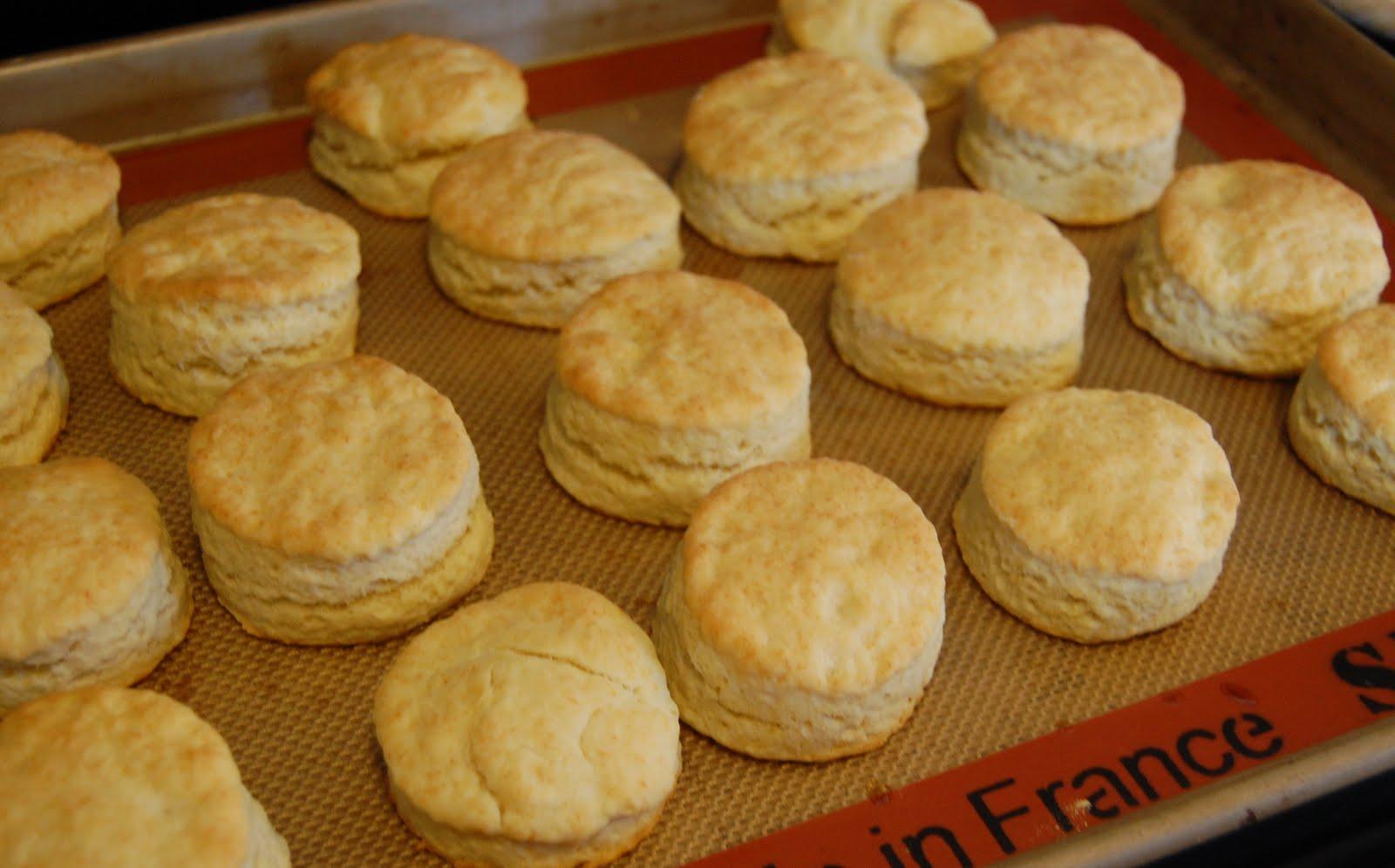 baking powder biscuits 2 c all purpose flour 1 tb baking powder 1 tsp ...