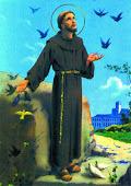 """O """"pobrezinho de Assis"""", como Francisco era chamado, foi uma criatura de paz e de bem, terno e amor"""