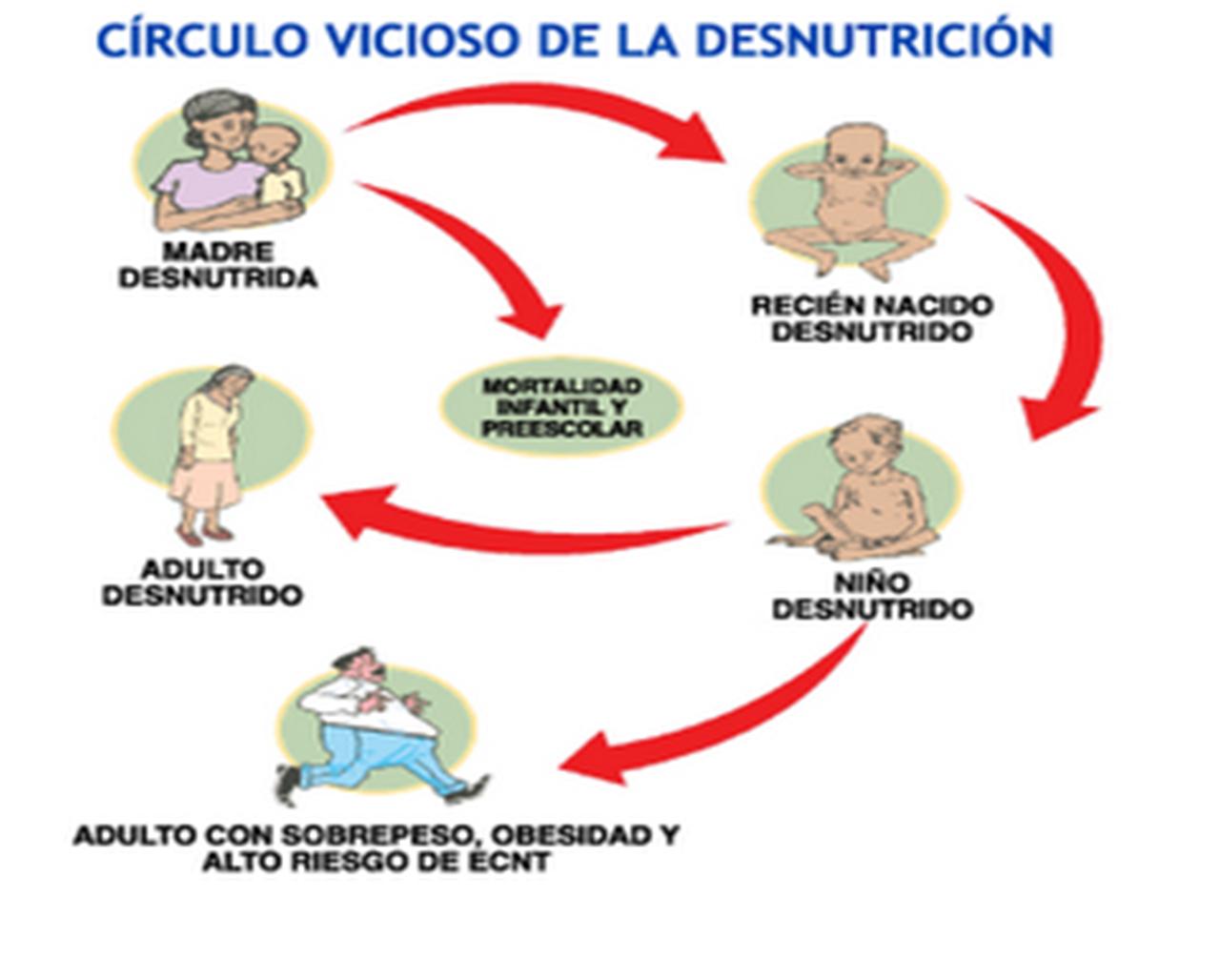 La escoliosis y los métodos de su profiláctica