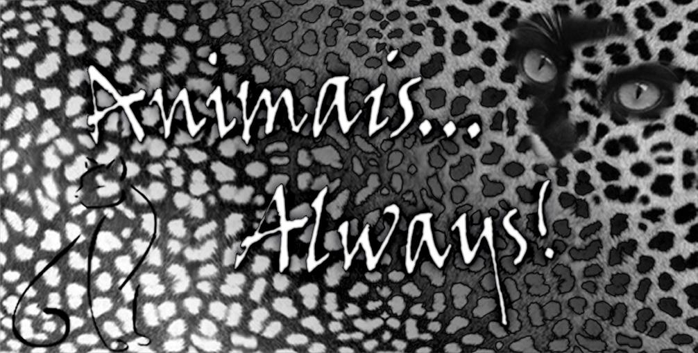 Animais Always
